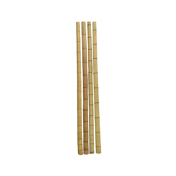 Бамбук ф9-10см