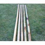 Бамбук ф7.5-9см