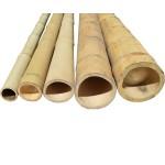 Бамбук ф4-5см