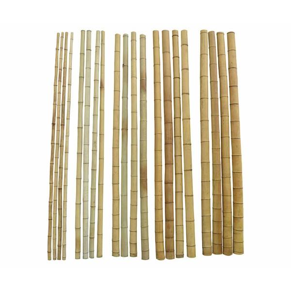 Бамбукови пръчки за разсад