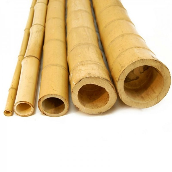 Бамбук ф7-8см