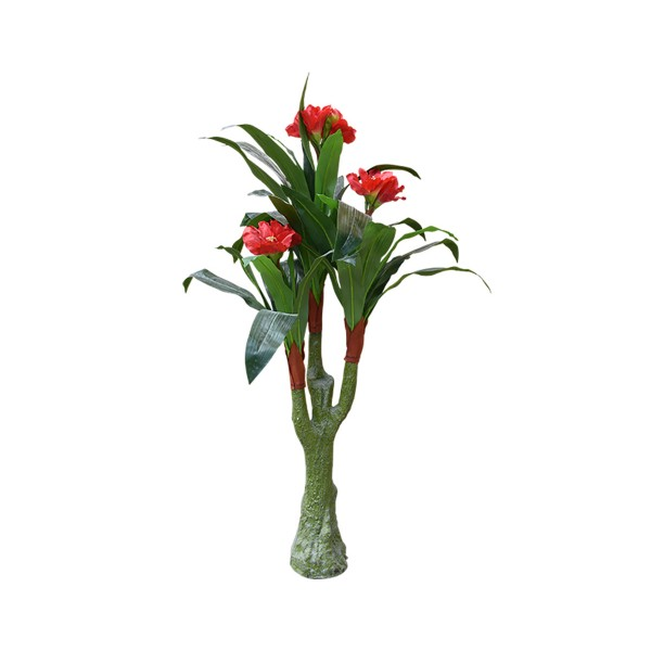 Амарилис с червен цвят