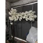 Декоративно дръвче с бели цветове