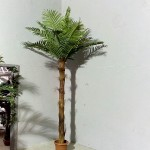 Кокосова палма 412-2