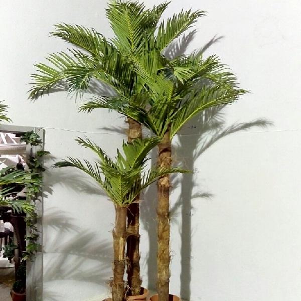 К-т Кокосови палми N3