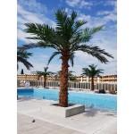 Изкуствена палма 4м стъбло