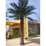 Изкуствена Дата палма