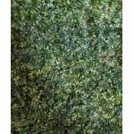 Зелен тревен панел Детелина
